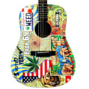 Martin D-420 Custom Graphic Acoustic Guitar