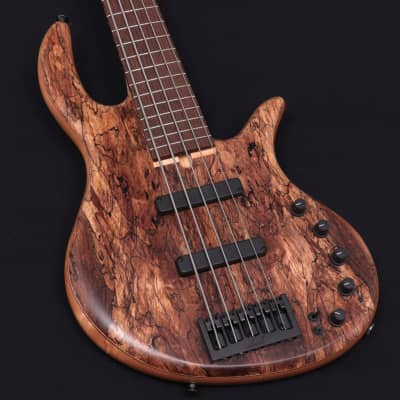Elrick Gold Series E-Volution 5st Spolted Maple Top Natural 08/04 for sale