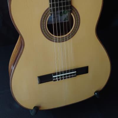 2018 Darren Hippner Jacaranda Rosewood and Spruce Classical Guitar for sale