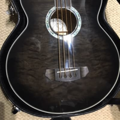 Michael Kelly dragonfly  -   fretless acoustic/electric for sale