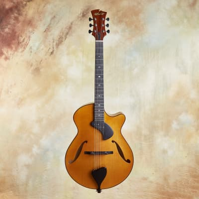 D'Ambrosio Allegro Archtop 2012 for sale