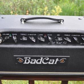 Bad Cat Hot Cat 15 15-Watt Guitar Amp Head