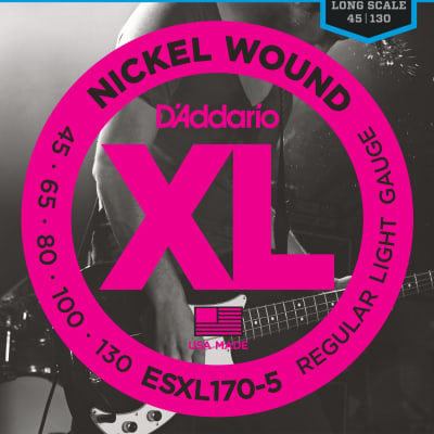 D'Addario ESXL170-5 Nickel Wound 5-String Bass, Light, Dbl Ball End, Long Scale