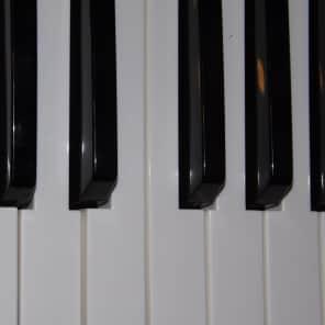 M-Audio Venom keys HIGH C