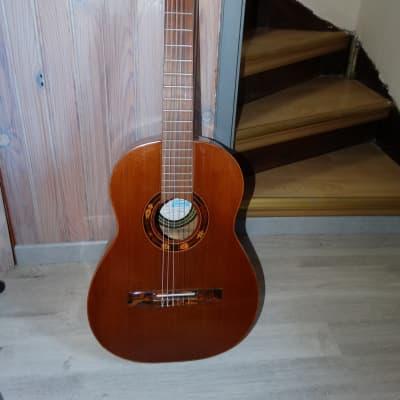 Guitare  Som d'Ouro - Di Giorgio  Modèle Guarany Brazil année 1984 for sale