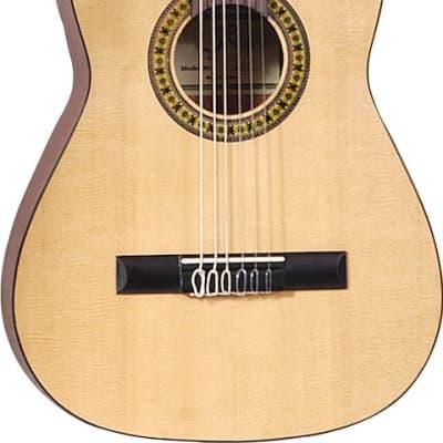 J Reynolds 36 Guitar W/Bag for sale