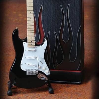 Fender(TM) Stratocaster(TM) - Classic Black Finish