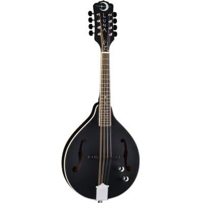 Luna Moonbird A Style Mandolin w/Piezo Pickup for sale