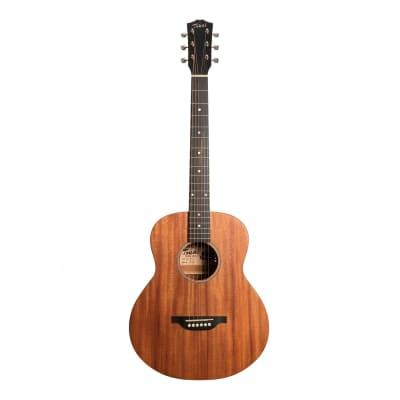 Tokai Terra Nova M3 Model Mini Acoustic-Electric Guitar (Natural Satin) for sale