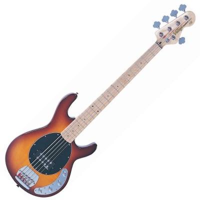 Vintage V965 Reissued Series 5-String