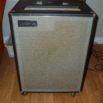 1970 Leslie 18 Guitar Cabinet for sale