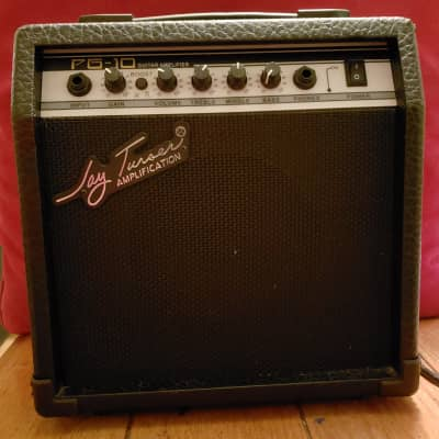 Jay Turser PG10 Amp for sale