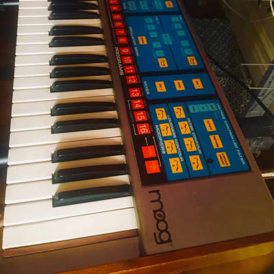 Moog Source 1981