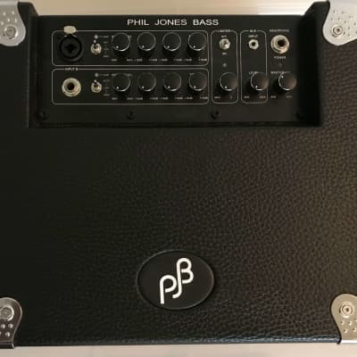 Phil Jones BG-100 Bass Cub 2x5 100w Combo Amp