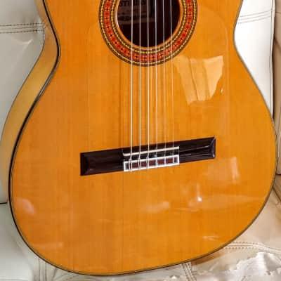 Asturias Prelude F model  Concert Flamenco Guitar for sale