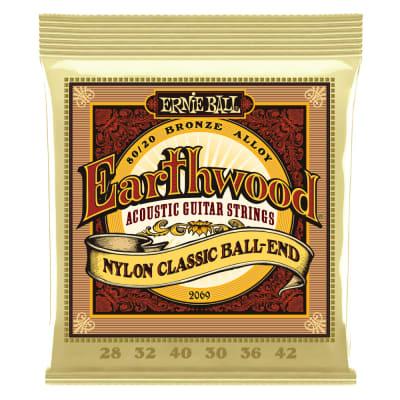 Ernie Ball Earthwood 80-20 Bronze Nylon Ball End Guitar Strings (28-42) for sale