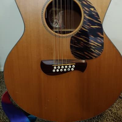 Tacoma EM-912  Satin 12 String Acoustic Electric for sale