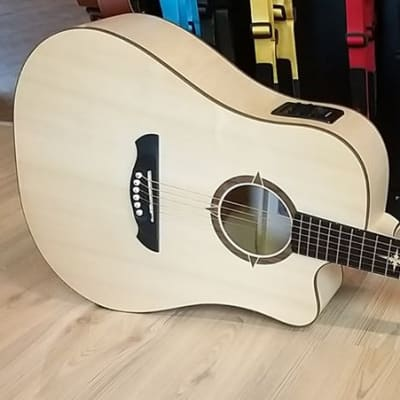 VGS P-10 CE Polaris / Acoustic Guitar for sale