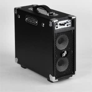 """Phil Jones BG-200 2x5"""" Briefcase 160-Watt Bass Combo"""
