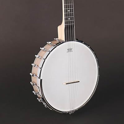 Richwood Master Series RMB-1405-LN long neck open back 5-string banjo for sale