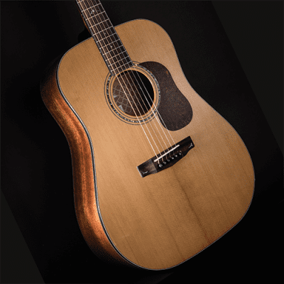 Cort GOLDD6 Gold Series Dreadnought Torrefied Solid Spruce Top 6-String Acoustic Guitar w/Gig Bag for sale