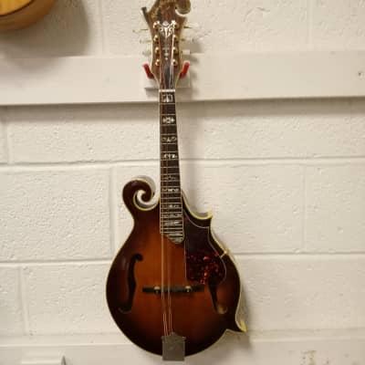 Hondo F style Mandolin 70's Sunburst for sale