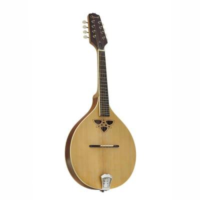 Ozark Flat Back Mandolin for sale