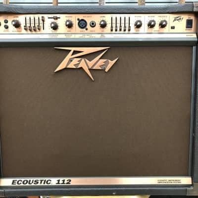 Peavey Ecoustic 112 Acoustic Combo