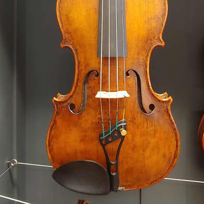 Thomas Dunn Professional Violin 2018 Golden Brown