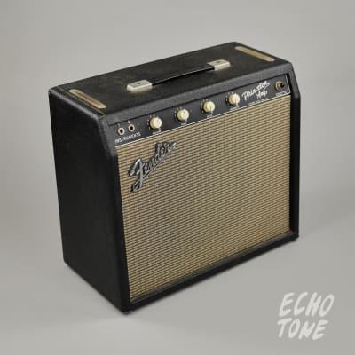 1964 Fender Princeton Amp (Tuxedo Model, 240v) for sale