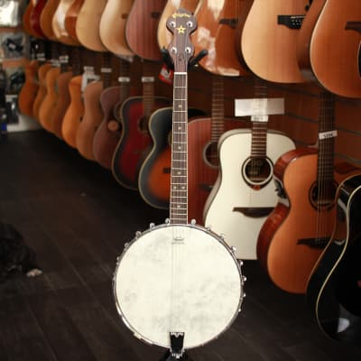 Pilgrim VPB05T Short Scale Tenor Banjo Natural for sale