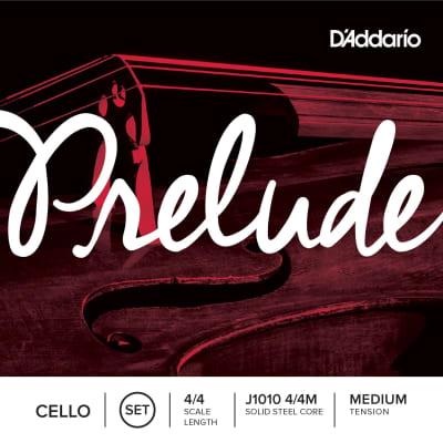 D'Addario Prelude Cello Strings, 4/4, G-Nickel Wound/Solid Steel Core