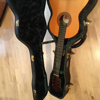 Vicente Sanchís 2007 and Guardian Hard Shell Case for sale