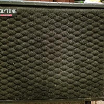 Polytone Mini-S12L Black for sale
