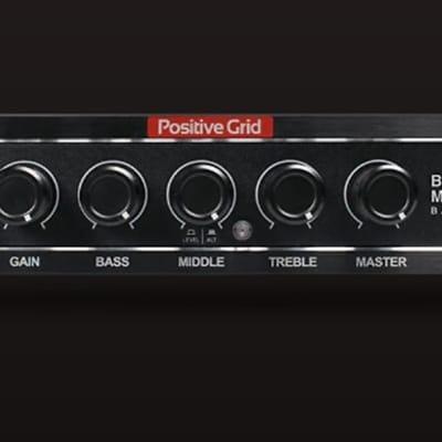 Positive Grid BIAS Mini 300-Watt Bass Head-Mint Condition