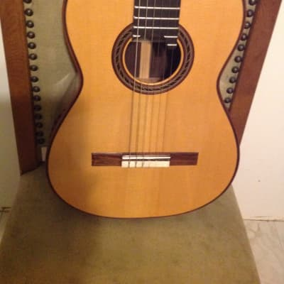Kenny Hill 2011 performance model Spruce/Indian Rosewood for sale