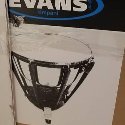 2 Evans Evans Strata Series Timpani Drum Heads, 36 inch White/Opaque