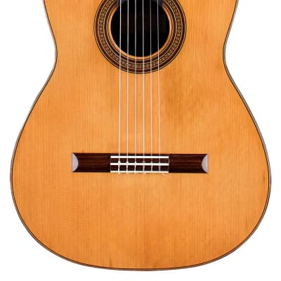 Edgar Monch 1973 Classical Guitar Cedar/Indian Rosewood for sale