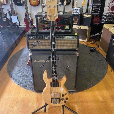 Pre-Owned Pedulla Orsini Bass for sale