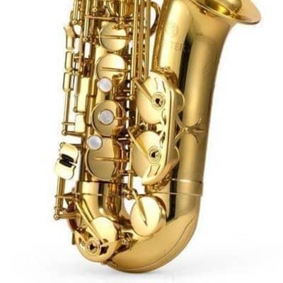 Jupiter JAS1100 Performance Series Eb Alto Saxophone - JAS1100 - Base Model