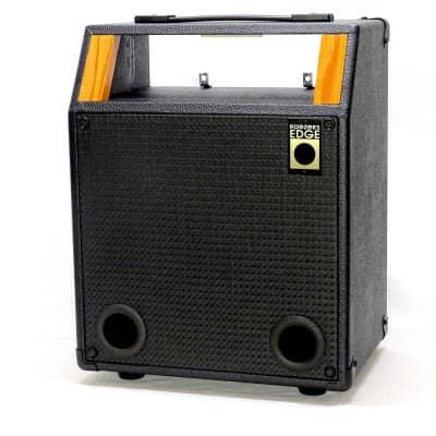 Raezer's Edge Acoustic 10 COMBO for sale