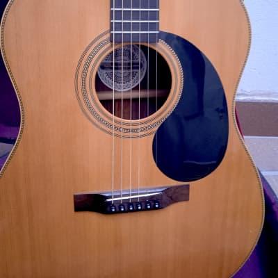 1975 Gurian S3R, a wonderful guitar for sale