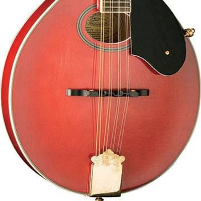 Washburn M1SDLTR Mandolin