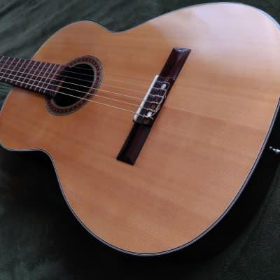 Vintage Ensenada CG-105 in Excellent condition! for sale