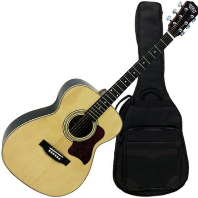 Storm F80GN-BAG acoustic guitar for sale