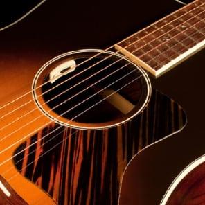 LR Baggs Anthem SL Tru Mic Acoustic Guitar Pickup System, w/shirt & shipping