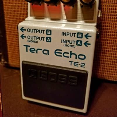 2019 Boss Tera Echo TE-2