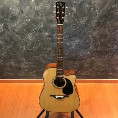 Custom Acoustic FG85 ce Natural Gloss Finish