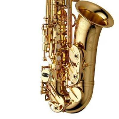 Yanagisawa AW01 Alto Saxophone All Finishes - AW01(Lacquer)