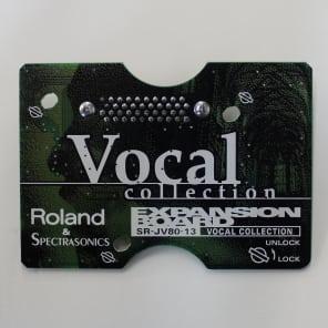 Roland SR-JV80-13 Vocal Collection Expansion Board